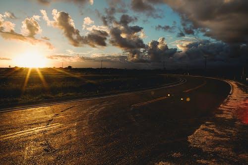 Asphalt road near meadow at sunset