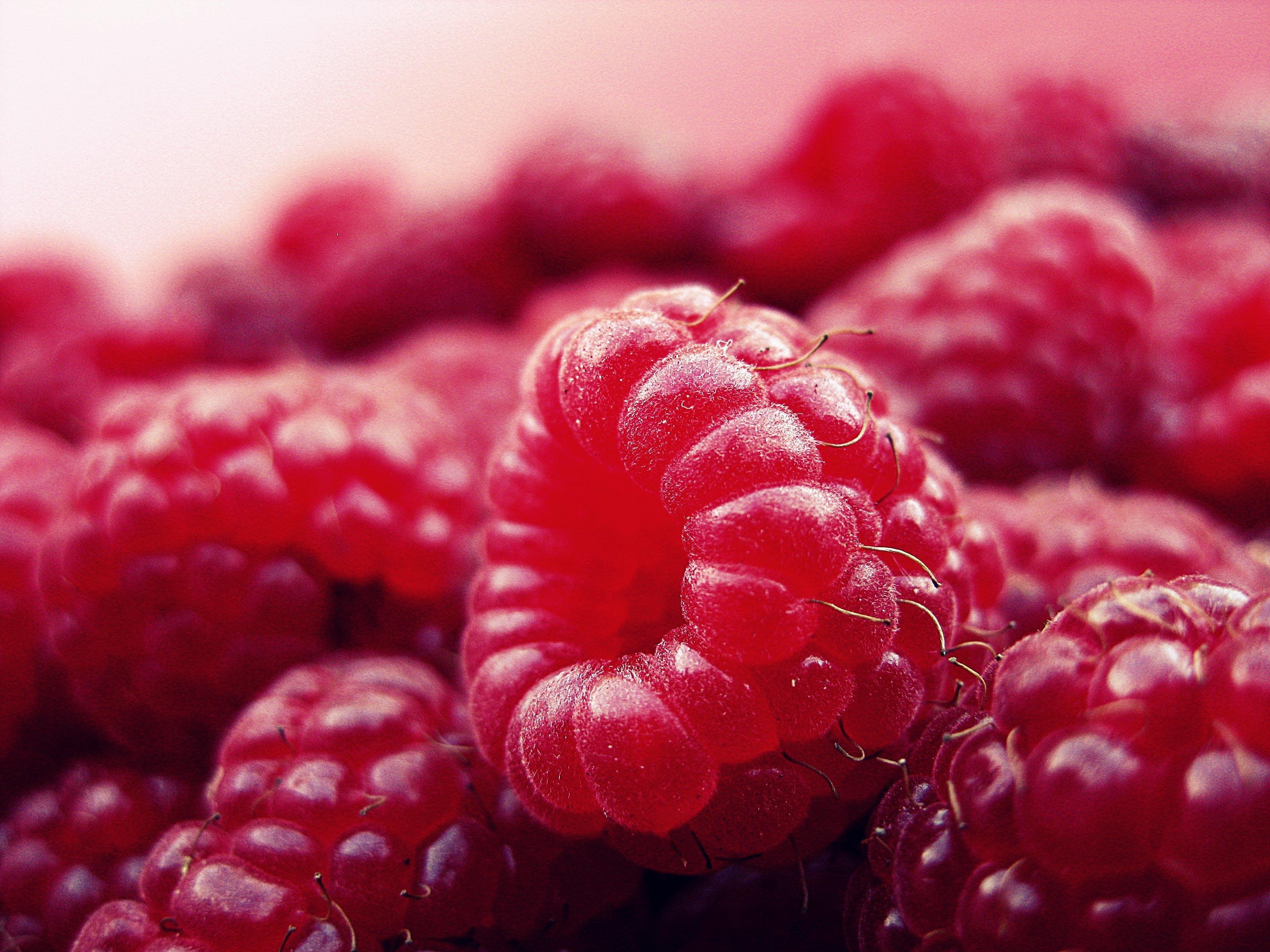 Kostnadsfri bild av frukt, hallon, mat, mogen