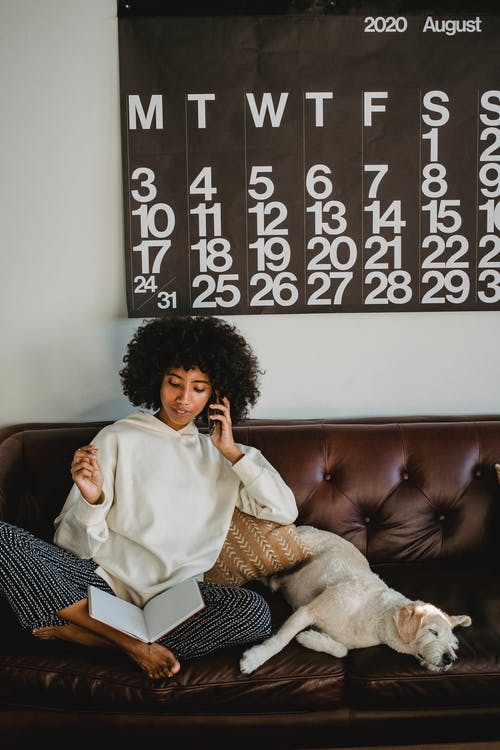 Full body of young African American female with curly hair in casual clothes talking on smartphone and reading notebook while sitting on comfortable couch near sleeping cute dog