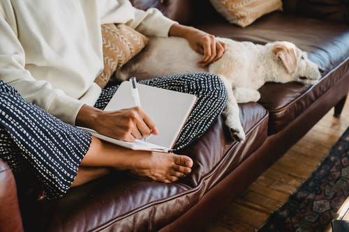 Faceless young female freelancer taking notes while sitting on couch with dog