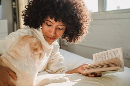 Side view of young stylish African American female with curly hair cuddling cute dog while lying on comfortable bed and reading interesting book