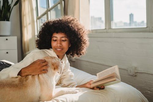 Side view of happy young African American woman with curly hair lying on bed and stroking adorable dog while reading book on sunny day