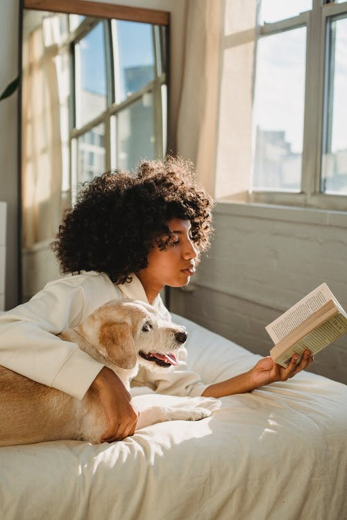 Side view of calm young African American lady embracing funny curious dog while lying together on bed and reading interesting novel