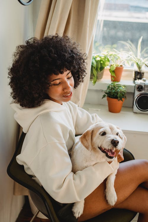 Black woman hugging funny puppy sitting at home