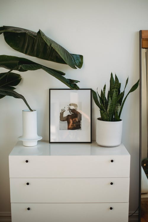 White cabinet with three desks and with potted green plants and framed picture