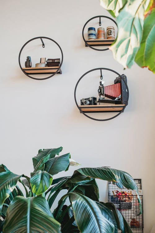 Creative round shelves on white wall in modern apartment