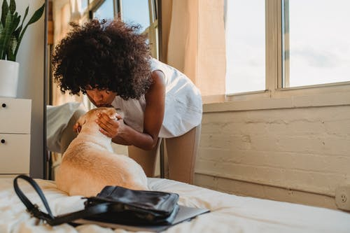 Mulher Negra Beijando Cachorro Fofo Deitado Na Cama