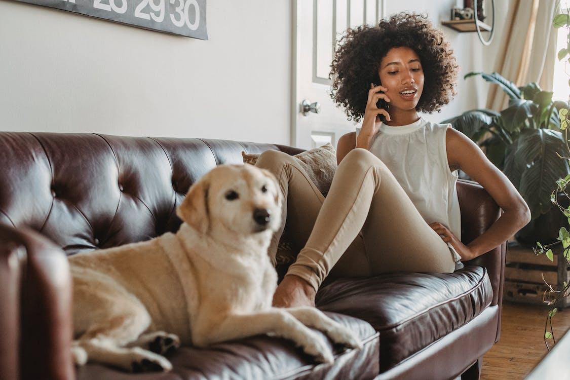 Mulher Negra Sorridente Falando No Smartphone Enquanto Estava Deitada Com O Cachorro