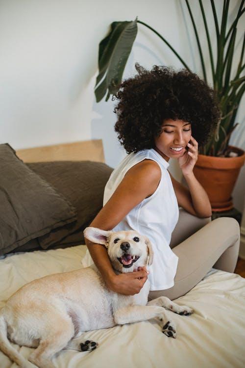 Ingyenes stockfotó afro-amerikai nő, állat, barát témában