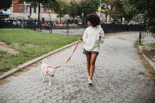 Black woman with coffee walking dog