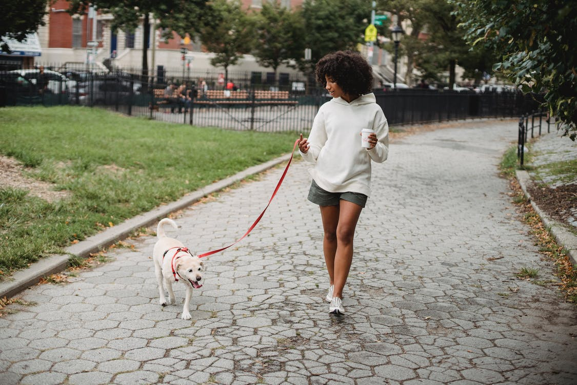 Woman with coffee walking dog to reduce stress