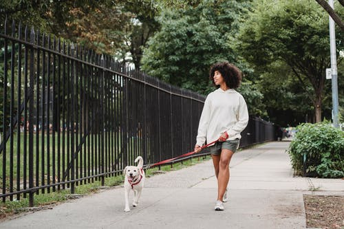Black woman walking with dog on street