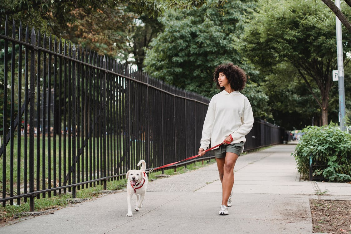 Black woman walking with dog on street