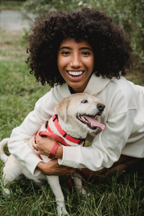 Positive African American female looking at camera while embracing playful dog on leash on grassy lawn in park with blurred background