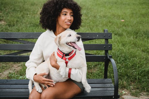 Content black woman petting dog on bench