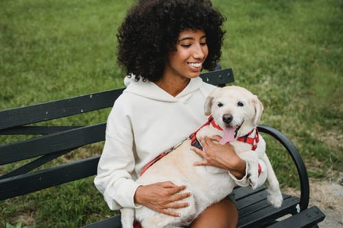 Cheerful black woman on bench with dog