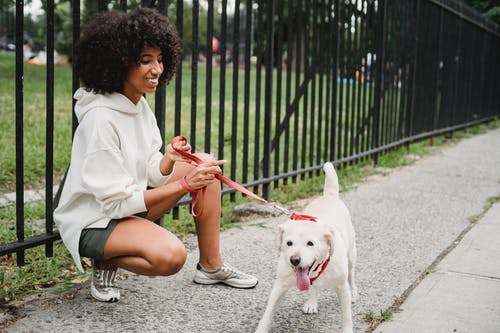 Full body side view of cheerful African American female owner squatting near metal fence with playful dog on red leash in street