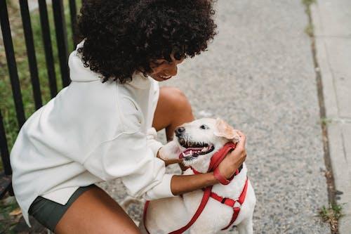 Cheerful black woman petting dog on street