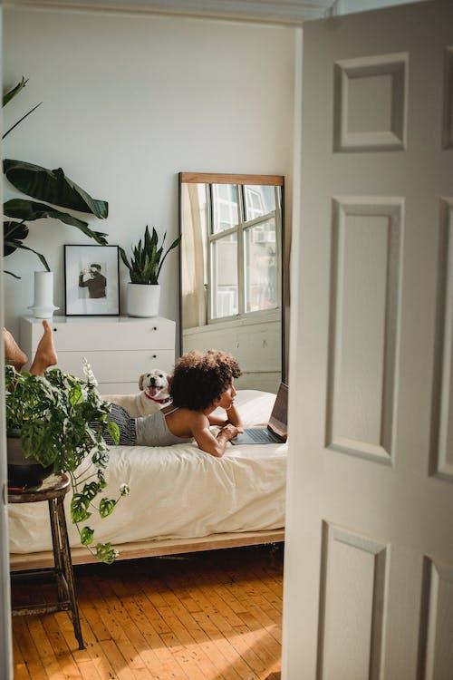 Frau Mit Hund Im Gemütlichen Schlafzimmer