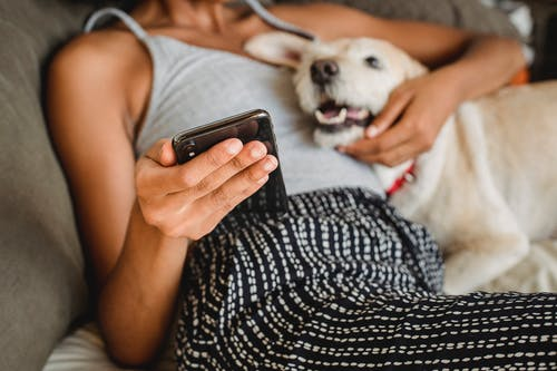 Cortar Mulher étnica Com Smartphone Abraçando O Cachorro Fofo Na Cama