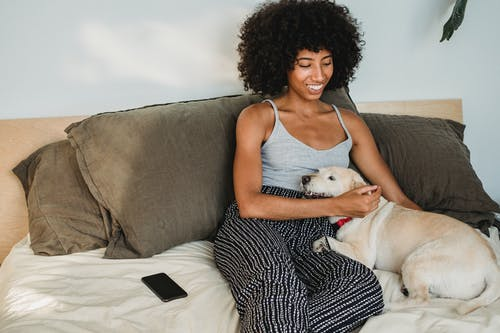 Young glad ethnic female with Afro hairstyle caressing adorable purebred dog on bed with smartphone at home