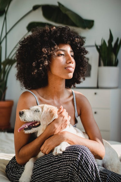 Young contemplative black female embracing cute puppy with tongue out while looking away on bed in house