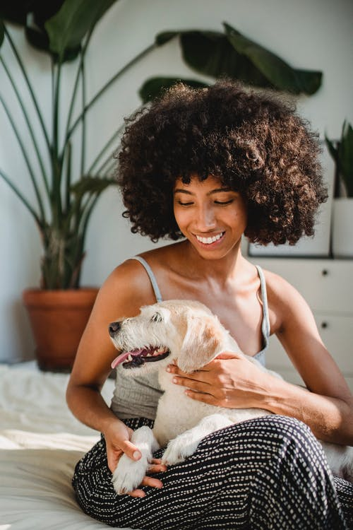 Cheerful black woman embracing dog in bedroom