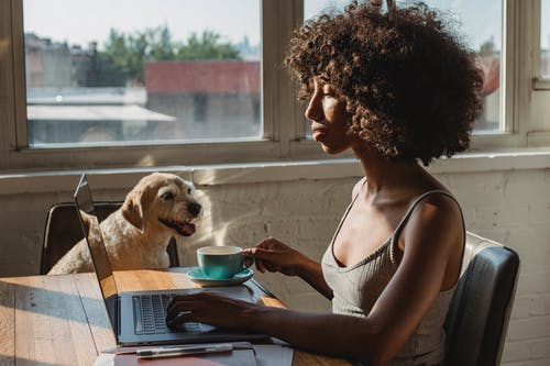 Side view of young black female remote employee with cup of hot drink working on netbook near dog at home
