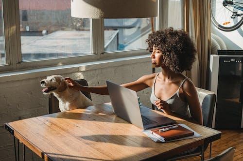 Black woman using laptop near dog in room