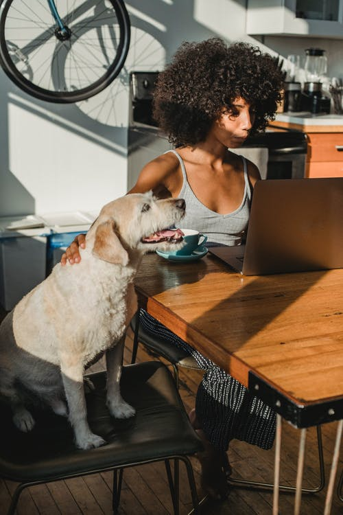Black lady sitting with dog and computer at home