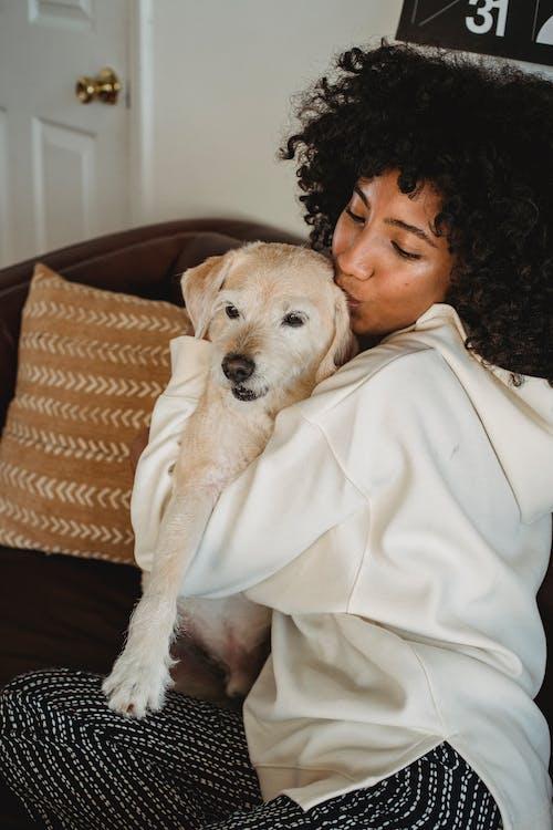 Black woman caressing adorable dog on sofa