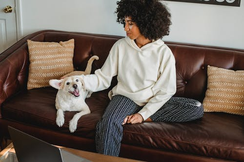 Black lady stroking dog on sofa