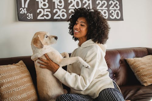 Smiling young African American woman cuddling with dog while sitting on sofa in casual clothes at home