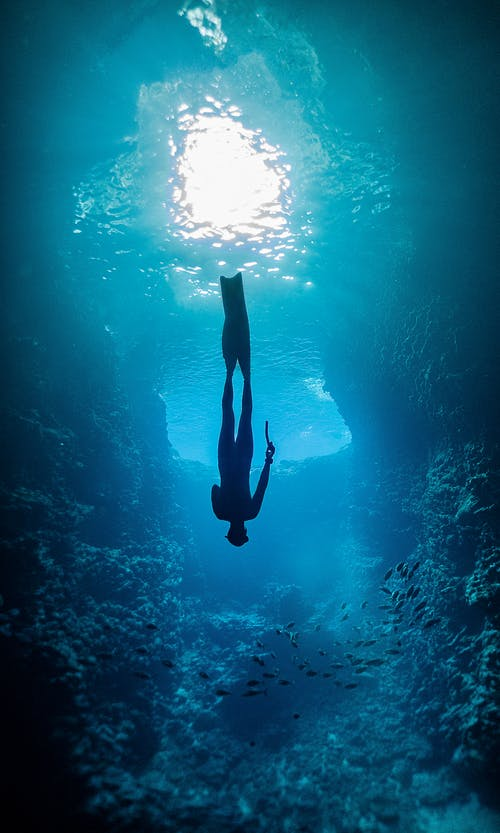 Person in Black Wetsuit Under Water