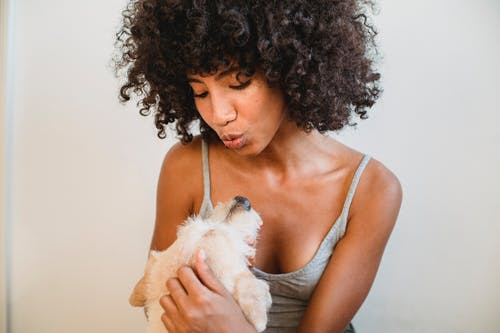 Cheerful African American female in domestic clothes hugging cute puppy against white wall at home