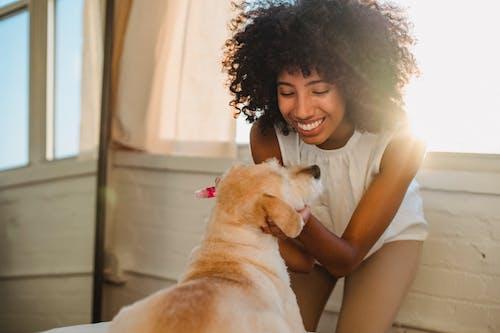 Cheerful black woman stroking dog at home