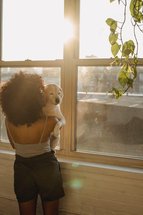在阳光下的非洲裔美国老妇携带狗