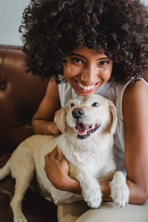 Cheerful African American charismatic female cuddling and hugging adorable dog while resting on sofa and looking at camera