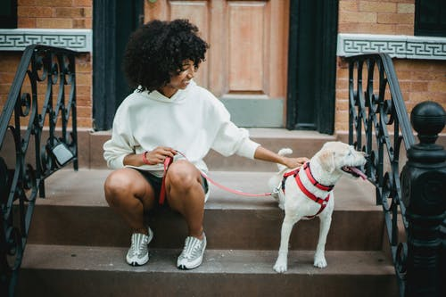 Full body of cheerful African American female in trendy outfit stroking adorable puppy with leash while resting on steps
