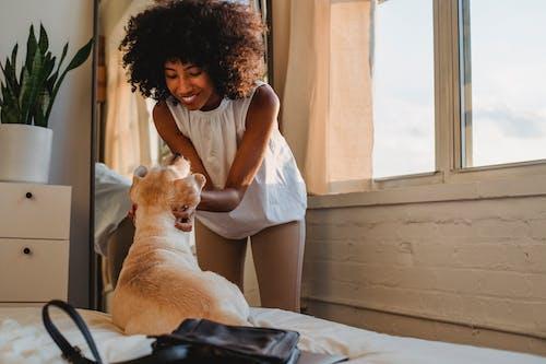 Black woman caressing purebred dog in bedroom