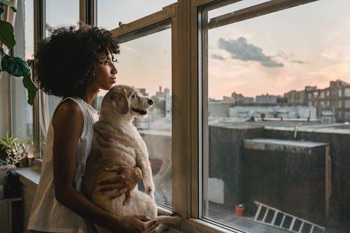 Người Phụ Nữ ôm Con Chó Khi đứng Gần Cửa Sổ