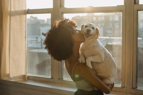 Người Phụ Nữ Da đen Hôn Con Chó Thuần Chủng Dễ Thương