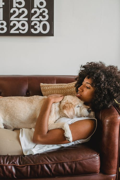 Woman Lying Down on Brown Leather Couch With Her Dog