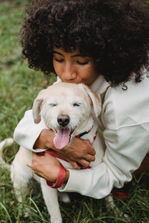 Người Phụ Nữ Da đen Hôn Con Chó Trong Công Viên