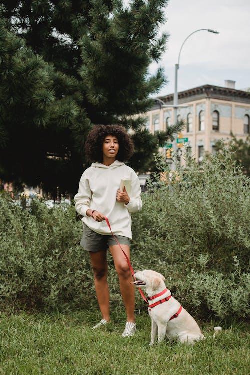 Cô Gái Trẻ Da đen Hạnh Phúc Với Chú Chó Ngoan Ngoãn đứng Trên Bãi Cỏ Trong Công Viên
