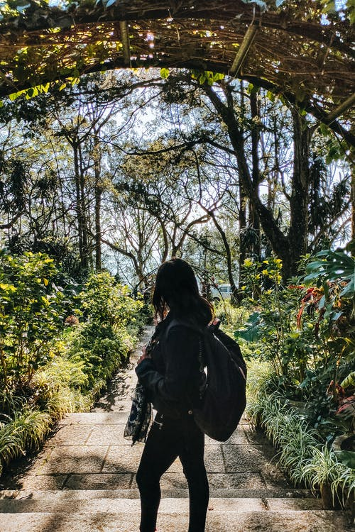 Woman in Black Jacket Walking on Pathway Surrounded by Green Trees
