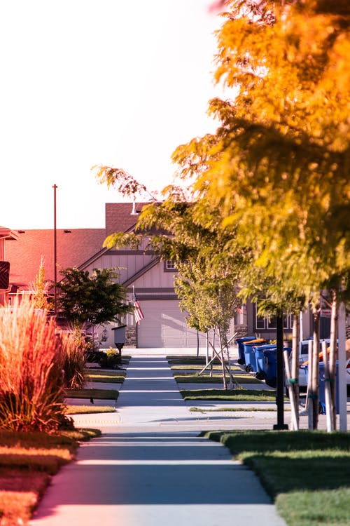Narrow asphalt walkway with green and yellow trees along leading to small house on sunny day in suburb