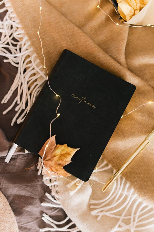 Black and Brown Book on White and Brown Textile