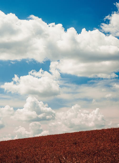 Free stock photo of blue, clouds, dense clouds