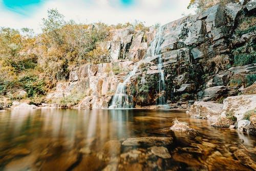 Foto profissional grátis de água, ao ar livre, árvore, cachoeira